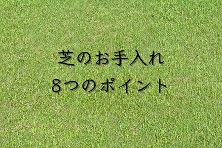 外構業者に教えてもらった芝のお手入れ8つのポイント